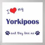Amo mi impresión del poster de Yorkipoos (perros m