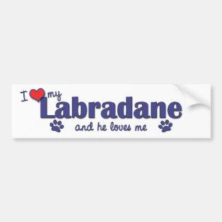 Amo mi Labradane el perro masculino Pegatina De Parachoque