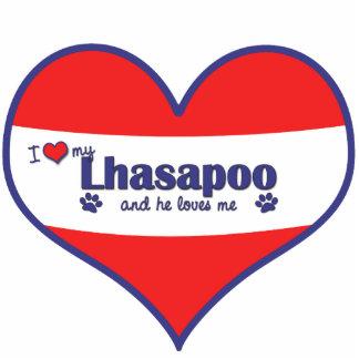 Amo mi Lhasapoo (el perro masculino) Esculturas Fotograficas