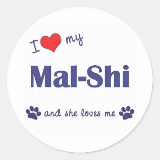 Amo mi Mal-Shi el perro femenino Pegatinas
