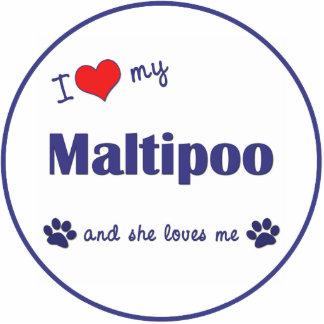 Amo mi Maltipoo (el perro femenino) Esculturas Fotograficas