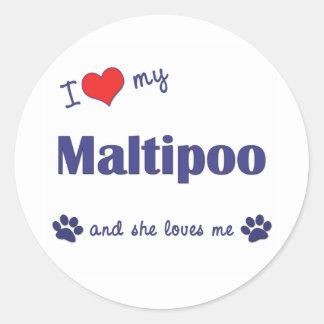 Amo mi Maltipoo (el perro femenino) Pegatina Redonda