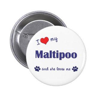 Amo mi Maltipoo (el perro femenino) Pins