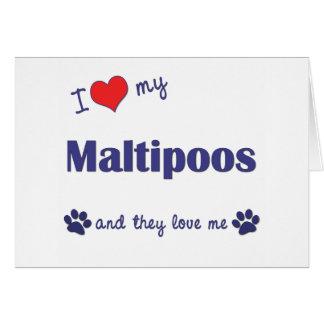Amo mi Maltipoos (los perros múltiples) Tarjetas