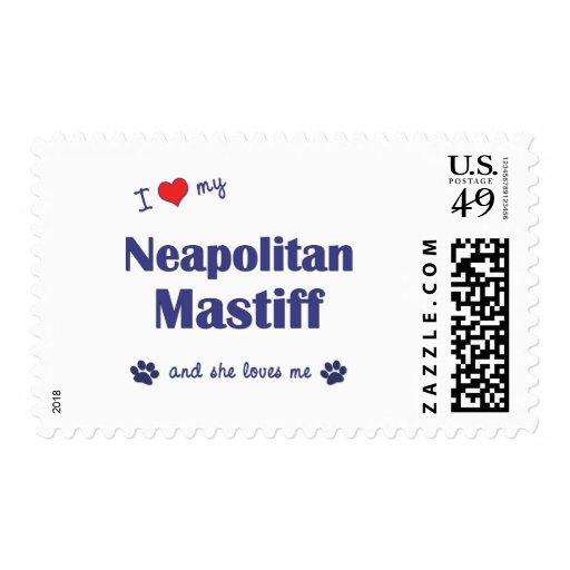 Amo mi mastín napolitano (el perro femenino) franqueo