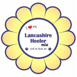 Amo mi mezcla de Lancashire Heeler (el perro mascu Adorno Fotoescultura
