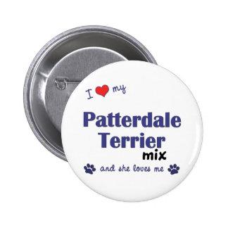 Amo mi mezcla de Patterdale Terrier (el perro feme Pin