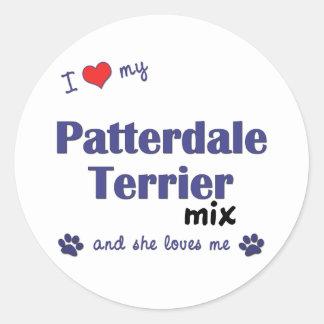 Amo mi mezcla de Patterdale Terrier (el perro Etiqueta Redonda