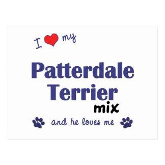 Amo mi mezcla de Patterdale Terrier (el perro Postal