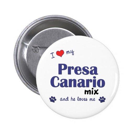 Amo mi mezcla de Presa Canario (el perro masculino Pins