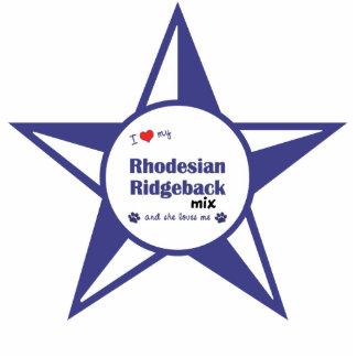 Amo mi mezcla de Rhodesian Ridgeback (el perro fem Adorno Fotoescultura