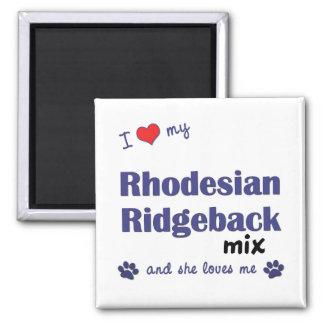 Amo mi mezcla de Rhodesian Ridgeback (el perro fem Imán Cuadrado