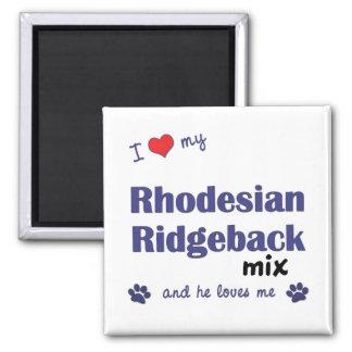Amo mi mezcla de Rhodesian Ridgeback (el perro mas Imán Cuadrado
