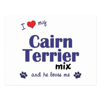 Amo mi mezcla de Terrier de mojón (el perro Tarjetas Postales