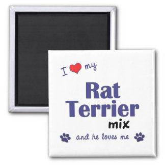 Amo mi mezcla de Terrier de rata (el perro masculi Imán Cuadrado