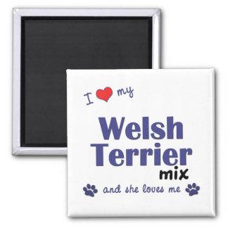 Amo mi mezcla de Terrier galés (el perro femenino) Imán