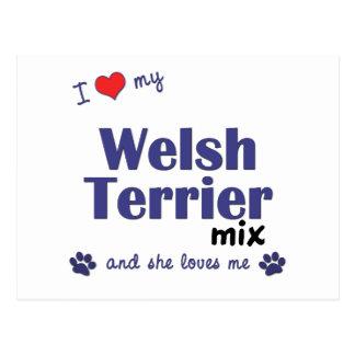 Amo mi mezcla de Terrier galés (el perro femenino) Postales