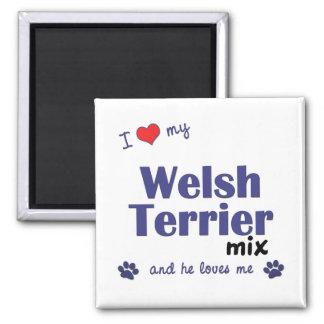 Amo mi mezcla de Terrier galés (el perro masculino Imanes De Nevera