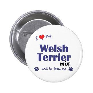 Amo mi mezcla de Terrier galés (el perro masculino Pin