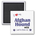 Amo mi mezcla del afgano (el perro masculino) iman