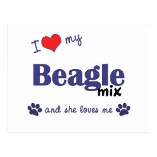 Amo mi mezcla del beagle (el perro femenino) tarjeta postal