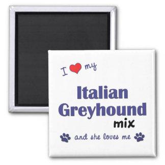 Amo mi mezcla del galgo italiano (el perro femenin imán cuadrado