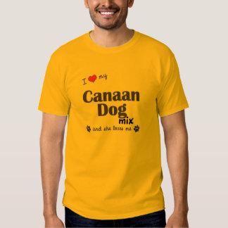 Amo mi mezcla del perro de Canaan (el perro Playera