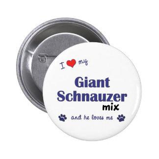 Amo mi mezcla del Schnauzer gigante el perro masc Pins