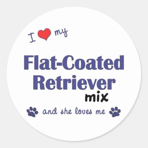 Amo mi mezcla Plano-Revestida del perro perdiguero Pegatina Redonda