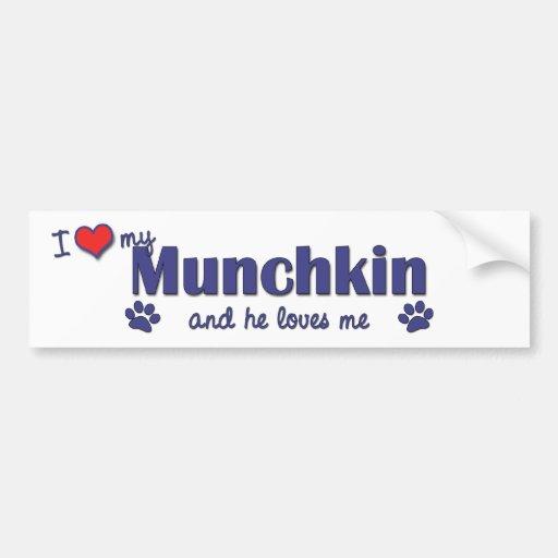 Amo mi Munchkin (el gato masculino) Pegatina De Parachoque