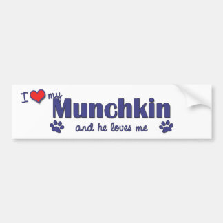 Amo mi Munchkin (el gato masculino) Pegatina Para Auto