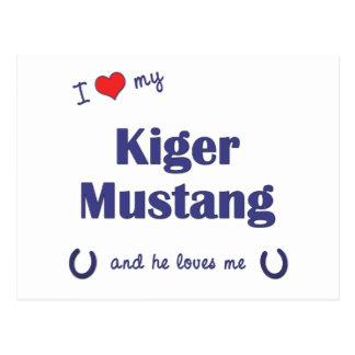 Amo mi mustango de Kiger (el caballo masculino) Postales