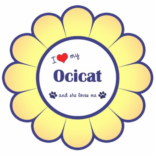 Amo mi Ocicat (el gato femenino) Esculturas Fotograficas