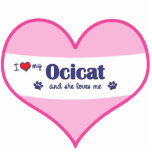Amo mi Ocicat (el gato femenino) Escultura Fotografica