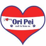 Amo mi Ori Pei (el perro masculino) Escultura Fotografica
