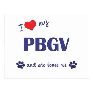 Amo mi PBGV el perro femenino Tarjetas Postales