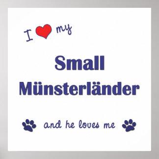 Amo mi pequeño Munsterlander (el perro masculino) Poster