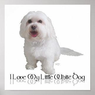 Amo mi pequeño perro blanco - Havanese Póster