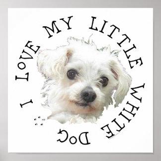 Amo mi pequeño perro blanco - maltés posters