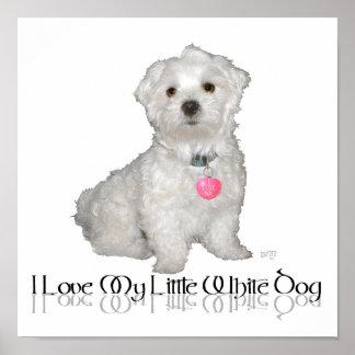 ¡Amo mi pequeño perro blanco - maltés! Posters