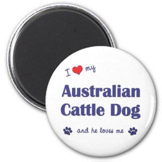 Amo mi perro australiano del ganado (el perro masc imán redondo 5 cm