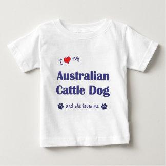 Amo mi perro australiano del ganado (el perro playera de bebé
