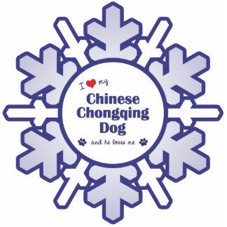 Amo mi perro chino de Chongqing (el perro masculin Escultura Fotográfica