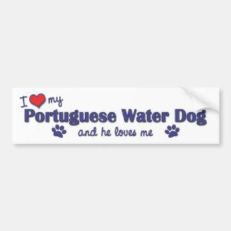 Amo mi perro de agua portugués (el perro masculino pegatina para auto