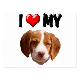 Amo mi perro de aguas de Bretaña Tarjetas Postales