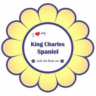 Amo mi perro de aguas de rey Charles el perro fem Escultura Fotográfica
