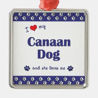 Amo mi perro de Canaan (el perro femenino) Adorno Cuadrado Plateado