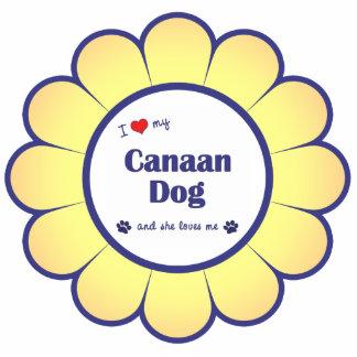 Amo mi perro de Canaan (el perro femenino) Adorno Fotoescultura