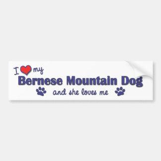 Amo mi perro de montaña de Bernese el perro femen Etiqueta De Parachoque