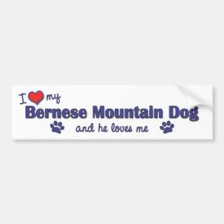 Amo mi perro de montaña de Bernese el perro mascu Etiqueta De Parachoque